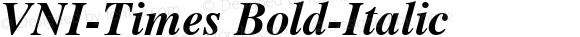 VNI-Times-Bold-Italic