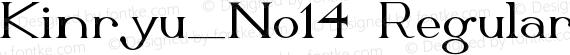 Kinryu_No14 Regular preview image
