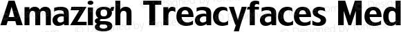 Amazigh Treacyfaces Medium 1.0 Tue Sep 12 22:21:13 1995