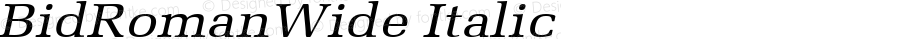 BidRomanWide Italic Altsys Fontographer 4.1 5/28/96