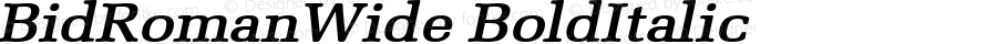 BidRomanWide BoldItalic Altsys Fontographer 4.1 5/28/96