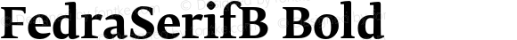 FedraSerifB Bold 001.000