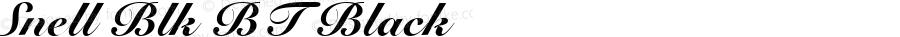 Snell Blk BT Black mfgpctt-v1.58 Thursday, March 4, 1993 9:00:30 am (EST)