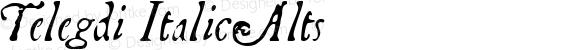 Telegdi ItalicAlts Macromedia Fontographer 4.1.3 9/27/01