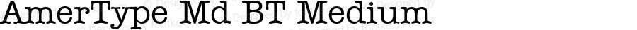 AmerType Md BT Medium mfgpctt-v1.53 Friday, January 29, 1993 11:59:39 am (EST)