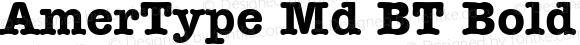 AmerType Md BT Bold 1.0 Mon Nov 06 14:18:30 1995