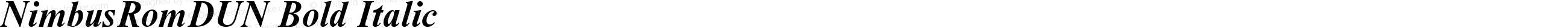 NimbusRomDUN Bold Italic