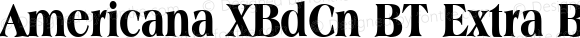 Americana XBdCn BT Extra Bold 1.0 Mon Nov 06 13:42:41 1995