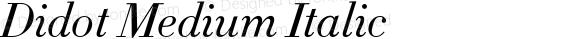 Didot Medium Italic preview image