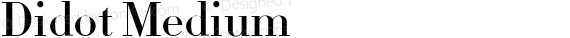 Didot Medium preview image