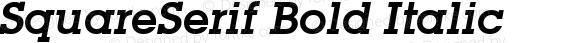 SquareSerif Bold Italic