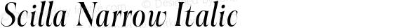Scilla Narrow Italic