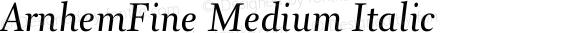 ArnhemFine Medium Italic 001.000