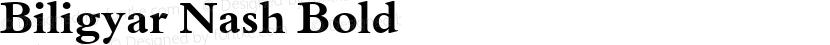 Biligyar Nash Bold Preview Image