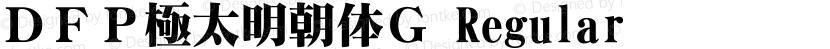 DFP極太明朝体G Regular Preview Image