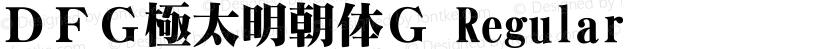 DFG極太明朝体G Regular Preview Image