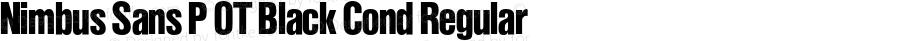 Nimbus Sans P OT Black Cond Regular OTF 1.001;PS 1.05;Core 1.0.27;makeotf.lib(1.11)
