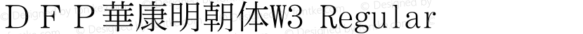DFP華康明朝体W3 Regular Preview Image