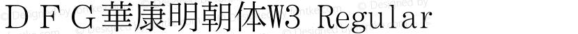 DFG華康明朝体W3 Regular Preview Image