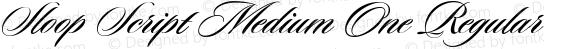 Sloop Script Medium One