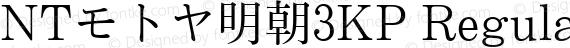 NTモトヤ明朝3KP Regular preview image