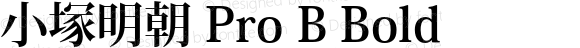 小塚明朝 Pro B Bold