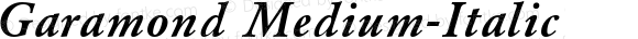 Garamond Medium-Italic