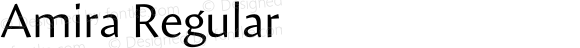 Amira Regular Version 1.000;PS 001.000;hotconv 1.0.38