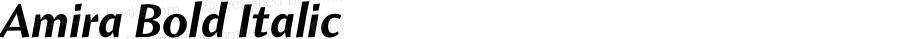 Amira Bold Italic Version 1.000;PS 001.000;hotconv 1.0.38