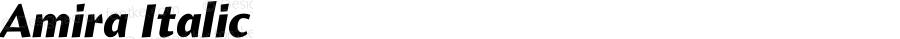 Amira Italic Version 1.000;PS 001.000;hotconv 1.0.38