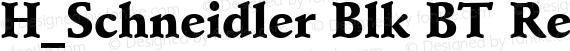 H_Schneidler Blk BT Regular preview image