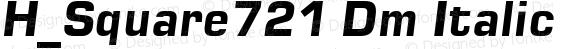 H_Square721 Dm Italic 1997.01.22