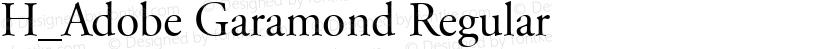 H_Adobe Garamond Regular Preview Image