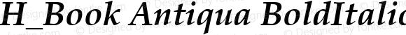 H_Book Antiqua BoldItalic 1997.01.15