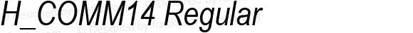 H_COMM14 Regular 1997. 01. 24.