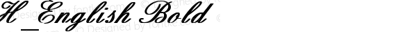 H_English Bold preview image