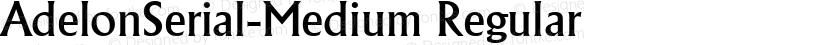 AdelonSerial-Medium Regular Preview Image
