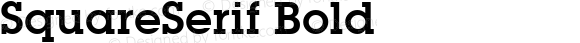 SquareSerif Bold