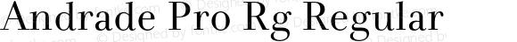 Andrade Pro Rg Regular Version 1.0