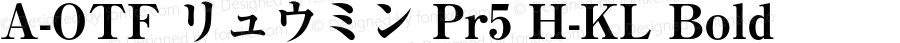 A-OTF リュウミン Pr5 H-KL Bold Version 1.010;PS 1.101;Core 1.0.38;makeotf.lib1.6.6565