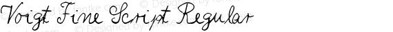 Voigt Fine Script Regular preview image