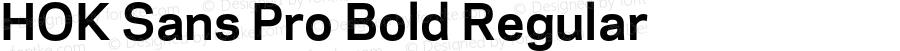 HOK Sans Pro Bold Regular Version 1.000