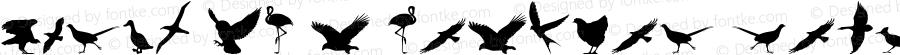 Birds of a Feather Regular Version 1.1; 2007