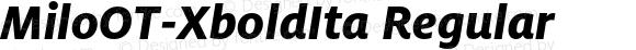 MiloOT-XboldIta Regular Version 7.504; 2006; Build 1002