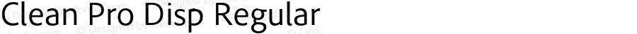 Clean Pro Disp Regular Version 1.00