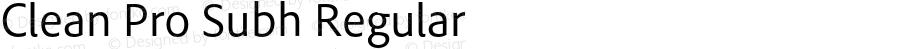 Clean Pro Subh Regular Version 1.00