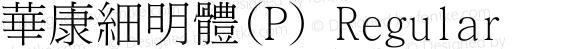 華康細明體(P) Regular Version 4.00