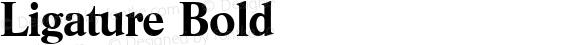 Ligature Bold 1.0 Thu Nov 02 16:08:24 1995