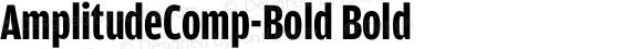 AmplitudeComp-Bold Bold 001.000
