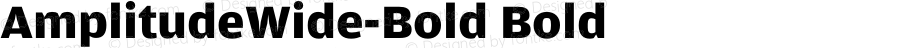 AmplitudeWide-Bold Bold 001.000